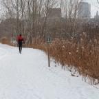 Devrait-on courir lors d'alertes de smog?
